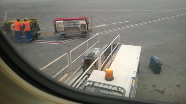 Foto op een van mijn reizen naar Nederland - vanuit het vliegtuig